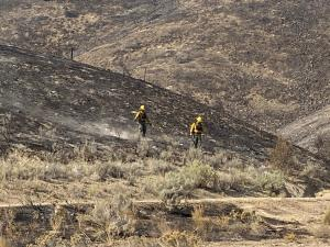 Firefighters Looking For Hot Spots