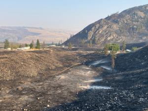 Foreground - a very black, charred drainage. Middle ground - homes and out buildings surrounded by a charred landscape. Background - a steep, rocky mountain rises and is very black with little unburned  vegetation. Green conifers are scattered throughout.