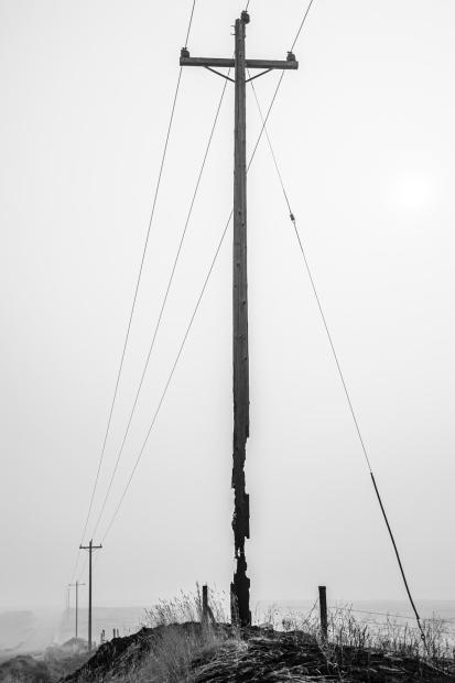 A burned telephone pole stands starkly against a hazy background, large sections missing from the pole's base, making it resemble a burnt match stick.