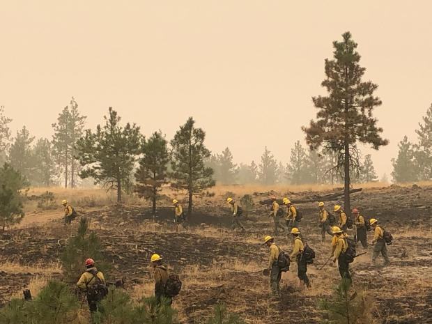 Wildland firefighters form an arc as they search for hot spots to extinguish, known as mopping up, on the Whitney Fire.