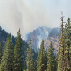 A short time lapse looking into the Little Rattlesnake creek area, with smoke seen in the drainage.